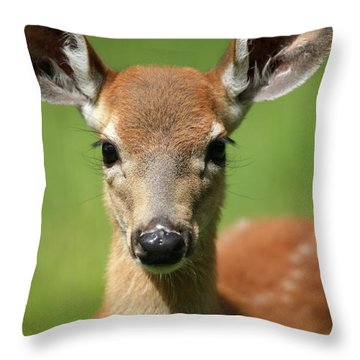 Bambi Throw Pillow by Karol Livote