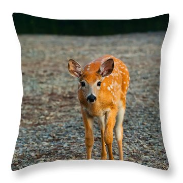Bambi Throw Pillow by Sebastian Musial