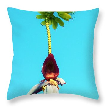 Throw Pillow featuring the photograph Banana In Full Bloom by Jasna Gopic