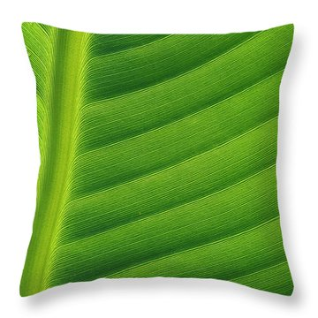 Banana Musa Sp Close Up Of Leaf Throw Pillow by Cyril Ruoso