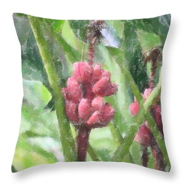 Throw Pillow featuring the photograph Banana Plant by Donna  Smith