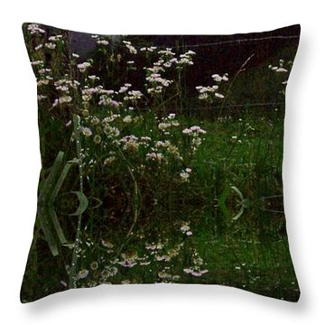 Throw Pillow featuring the photograph Barbed And Wire by Steven Lebron Langston