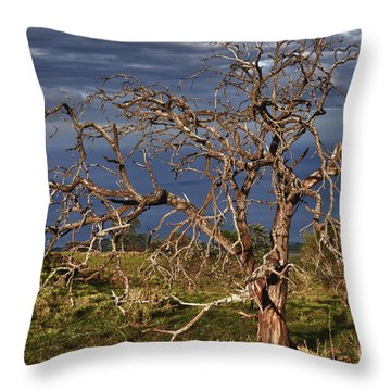 Bare Tree In Hana Maui Throw Pillow by Loriannah Hespe