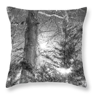 Throw Pillow featuring the photograph Bark At The Moon by Steven Lebron Langston