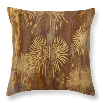 Bark Beetle Galleries Throw Pillow by Ted Kinsman