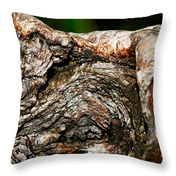 Bark Throw Pillow by Christopher Gaston