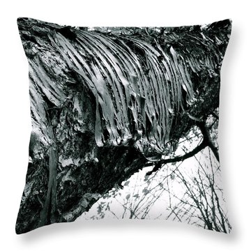 Barking Up At The Sky Throw Pillow by Trish Hale