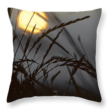 Barley Sunrise Throw Pillow by Nigel Forster