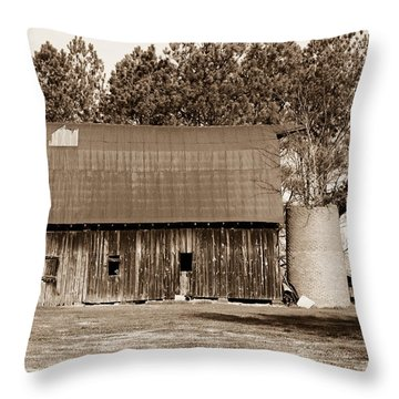 Barn And Silo 1 Throw Pillow by Douglas Barnett