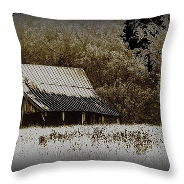 Barn In The Field Throw Pillow by Travis Truelove
