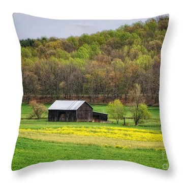 Barn In The Hollar Throw Pillow by Pamela Baker