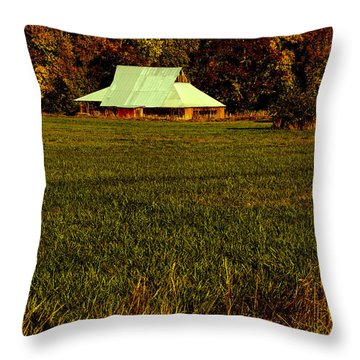 Barn In The Style Of The 60s Throw Pillow by Mick Anderson