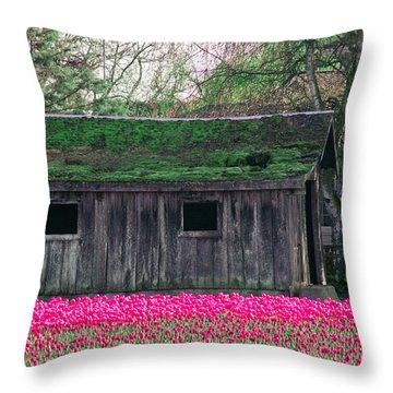 Barn Intensified Throw Pillow