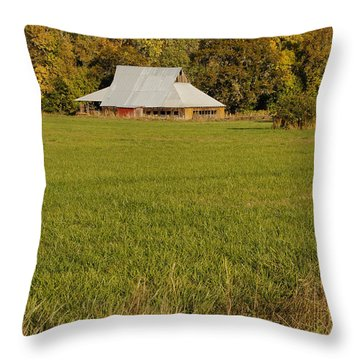 Barn Near Murphy Throw Pillow by Mick Anderson