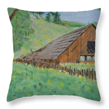 Barn On Hiway 20 Throw Pillow by Mick Anderson
