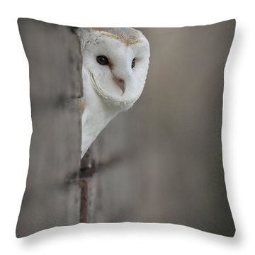 Barn Owl Throw Pillow by Andy Astbury