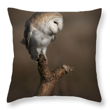Barn Owl On The Lookout Throw Pillow