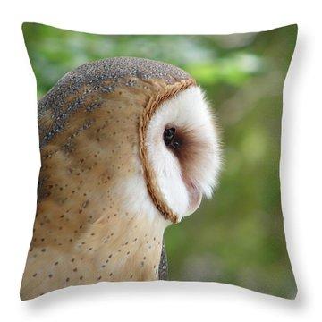 Barn Owl Throw Pillow by Randy J Heath