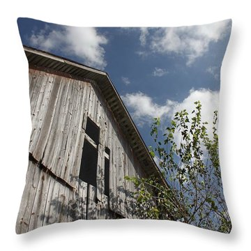 Barn To Be Wild Throw Pillow