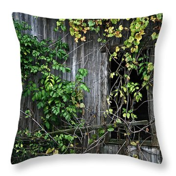 Barn Window Vine Throw Pillow