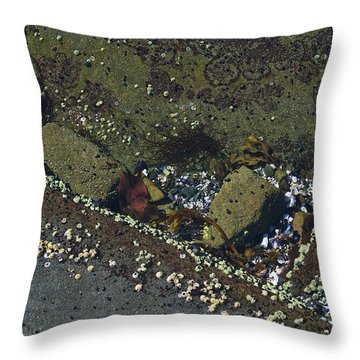 Barnacles And Rocks Throw Pillow
