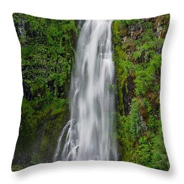 Barr Creek Falls Throw Pillow by Greg Nyquist