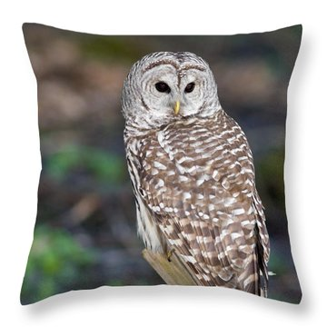 Throw Pillow featuring the photograph Barred Owl by Les Palenik