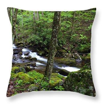 Barrenshe Run Throw Pillow by Thomas R Fletcher