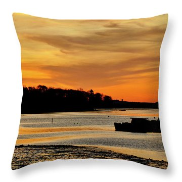 Bay Beauty Throw Pillow