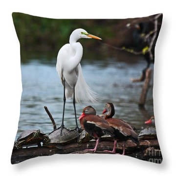 Throw Pillow featuring the photograph Bayou Friends by Luana K Perez