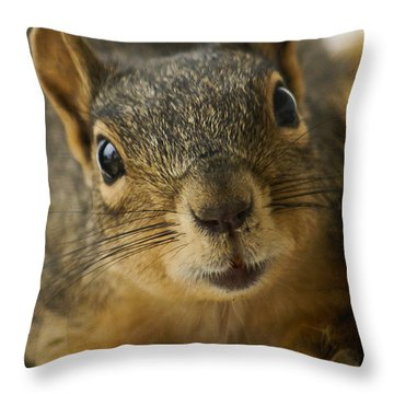 Be Friends Throw Pillow