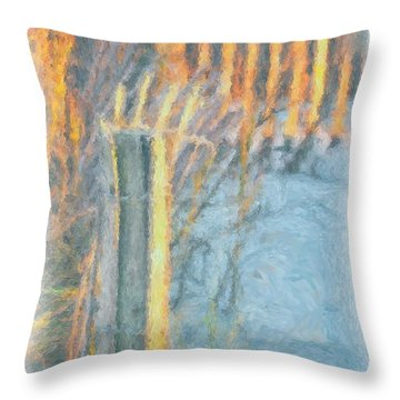 Beach Fence Throw Pillow by Lynne Jenkins
