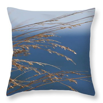 Beach Grass Throw Pillow