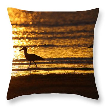 Beach Stone-curlews At Sunset Throw Pillow by Bruce J Robinson