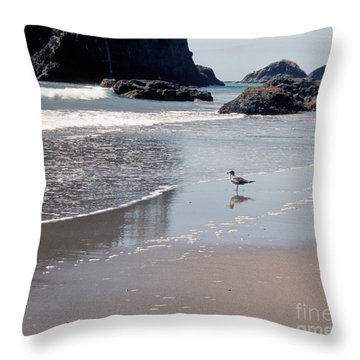 Throw Pillow featuring the photograph Beachcomber by Sharon Elliott