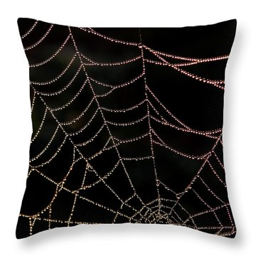 Beaded Beauty Throw Pillow