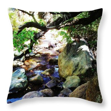 Bear Creek Branch Throw Pillow by Clarice  Lakota