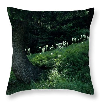 Throw Pillow featuring the photograph Bear-grass Ridge II by Sharon Elliott