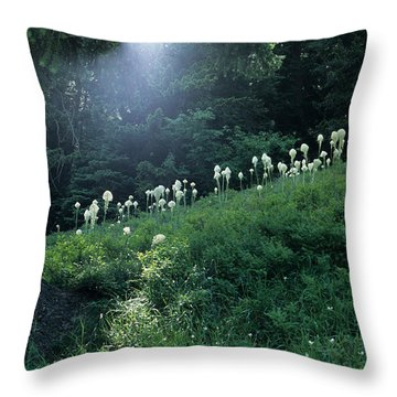 Throw Pillow featuring the photograph Bear-grass Ridge by Sharon Elliott