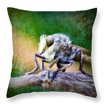 Bearded Robber Fly Throw Pillow by Barry Jones