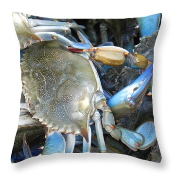 Throw Pillow featuring the photograph Beaufort Blue Crabs by Patricia Greer