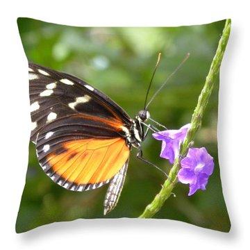 Beauties Secrets Throw Pillow