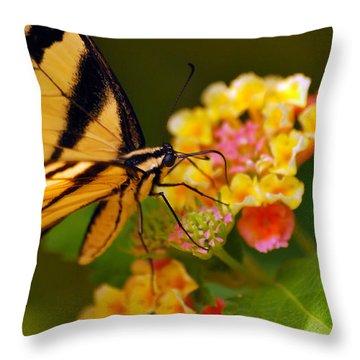 Beautiful Am I Throw Pillow