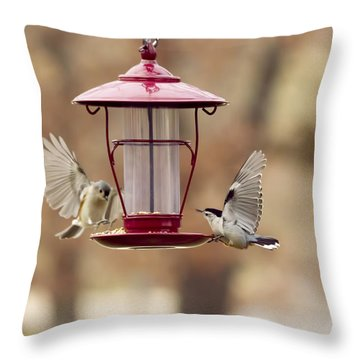 Beautiful Birds Throw Pillow