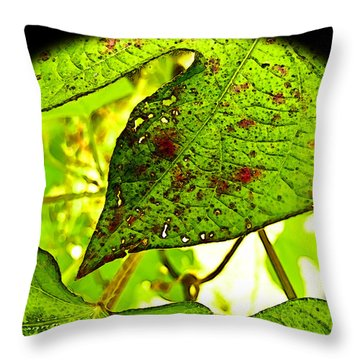 Throw Pillow featuring the digital art Beautiful Deday by Debbie Portwood