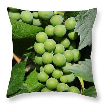 Beautiful Grapes Throw Pillow by Carol Groenen