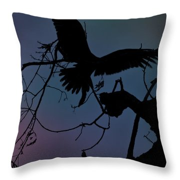 Beautiful Landing Throw Pillow by Kim Henderson
