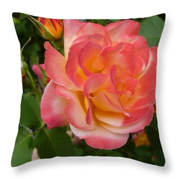 Throw Pillow featuring the photograph Beautiful Rose With Buds by Lingfai Leung