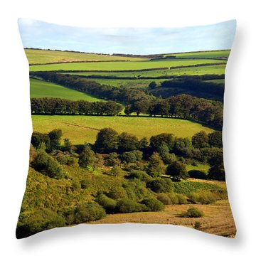 Beautiful Somerset Throw Pillow by Carla Parris