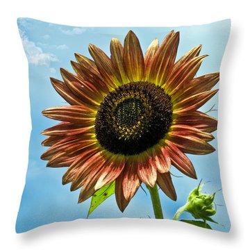 Throw Pillow featuring the photograph Beautiful Sunflower by Susan Leggett